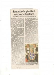 Pressebericht der MIndelheimer Zeitung zur Lesung bei Bücher Thurn am 4.10.12